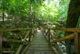 Pont en bois vizzavona