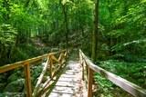 Pont sur le vecchio