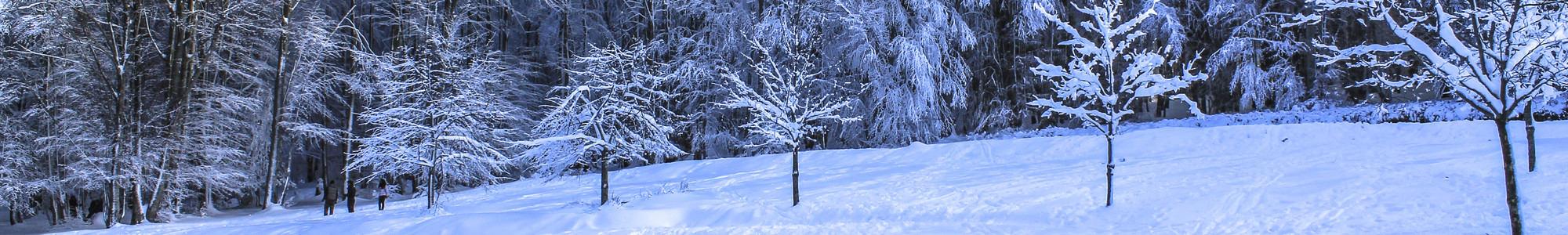 01 neige vizzavona