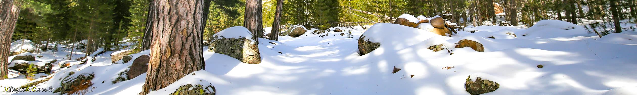 neige monte d oro vizzavona